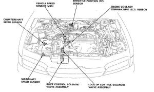1994 Honda Accord Ex Problems Help!!  HondaTech  Honda Forum Discussion