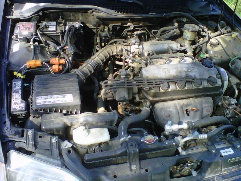 Honda Civic Engine Bay On 2000 Honda Civic Ex Engine Wiring Harness