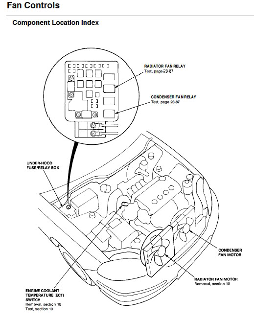 1994 Honda Accord Radiator Fan Wiring Diagram