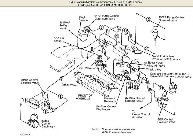 honda element 2006 wiring diagram