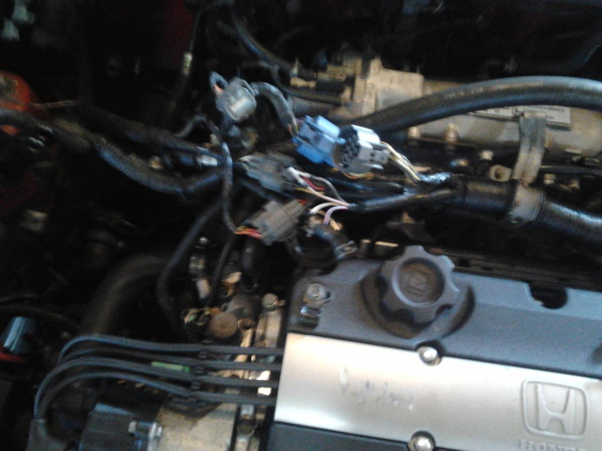 94 honda prelude wiring diagram for chinese atv type s h22a dohc vtec swap need help on wire