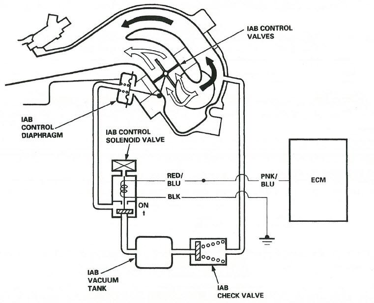 Toyota Aristo Vvt I Ecu Pinout Wiring Diagram ~ Elsavadorla