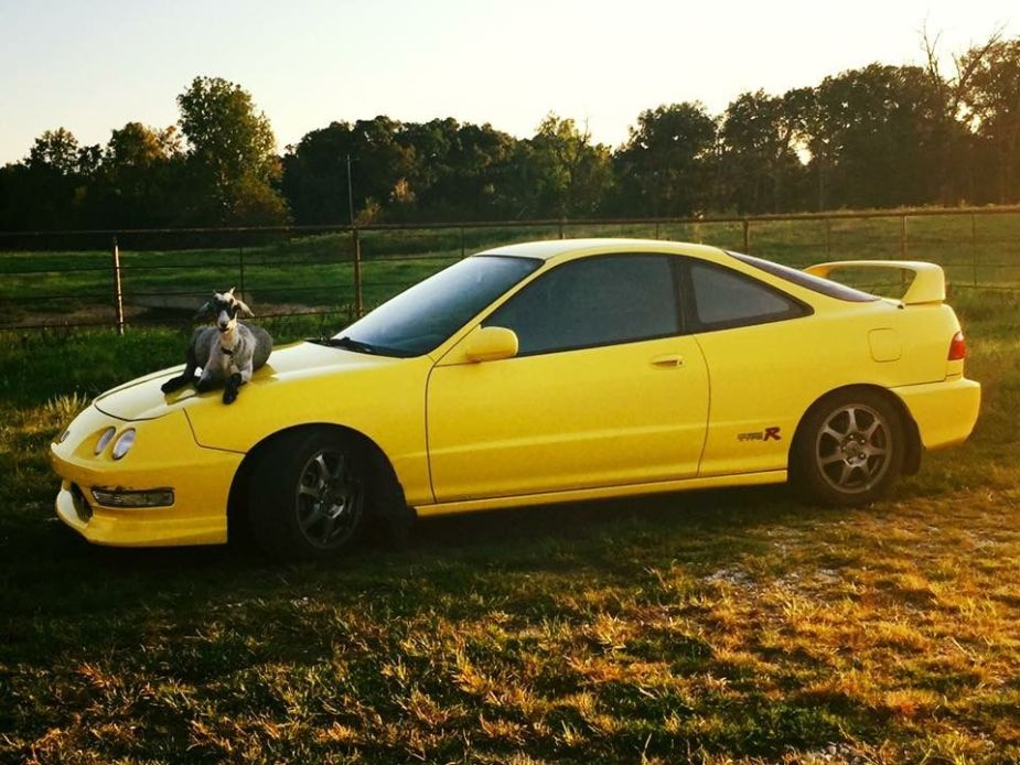 Acura Type R >> From The Forums Restoring A 2000 Acura Integra Type R Honda Tech