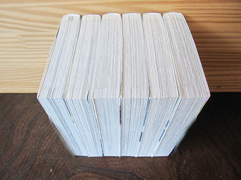 100均せどり・300冊出品3-1