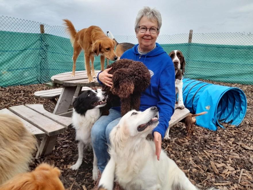 Ik ben Lenie Vermeulen, 65 jaar en baasje van een blond labrador Baya van 2 jaar. Ik ben 1 dag in de week vrijwilligster bij Hondenservice Zeeland en wel op de dinsdag.