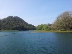 Lago de Yojoa 7