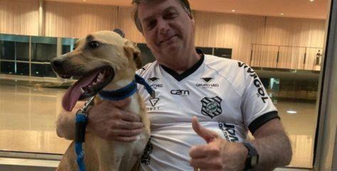 """Bolsonaro contra el medicamento chino Coronavac: """"La vacuna obligatoria aquí solo es para los perros"""""""