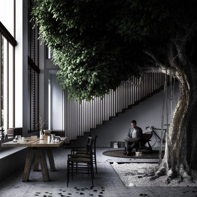 plante arbre intérieur