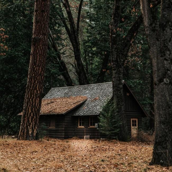bois village forêt