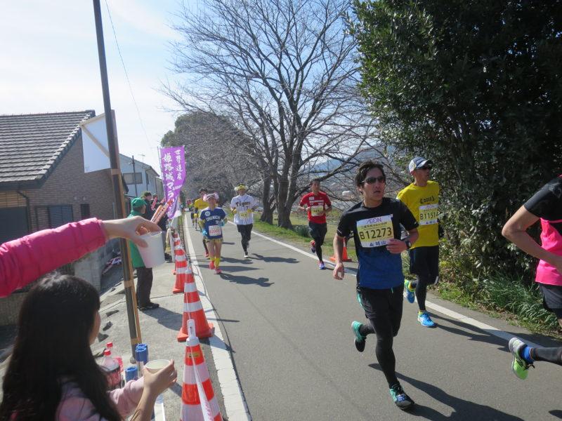 世界遺産姫路城マラソン31