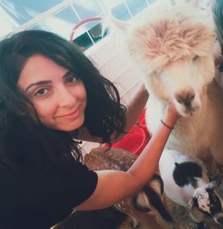 bita and alpaca