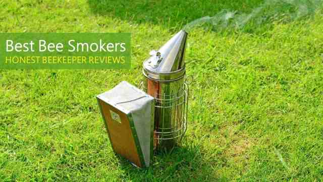 Best Bee Smoker
