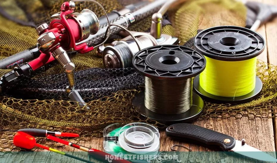 Best Fly Line