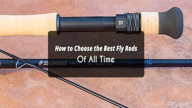 How to Choose the Best Fly Rods Of All Time