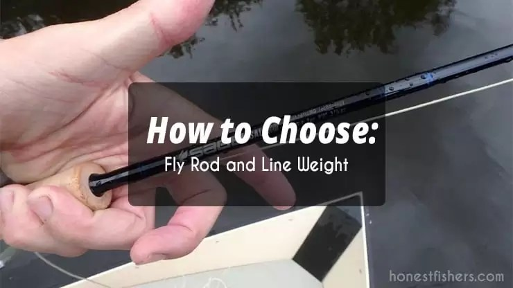 fly-line-and-rod-weight
