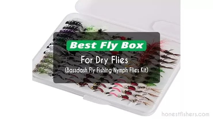 Best Fly Box for Dry Flies – Honest Fishers Review