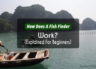 How Does A Fish Finder Work