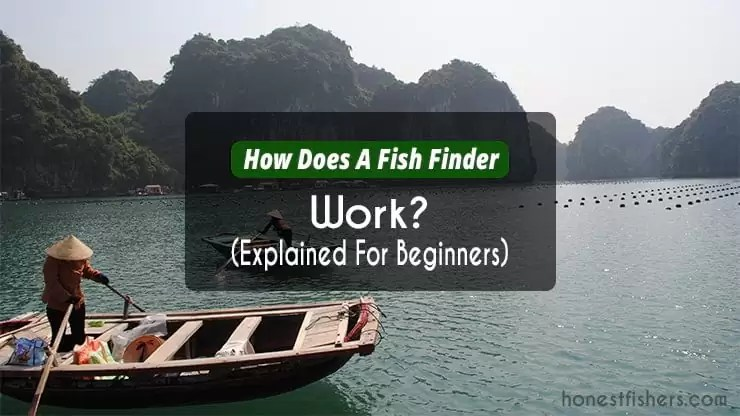 How Does A Fish Finder Work Explanation
