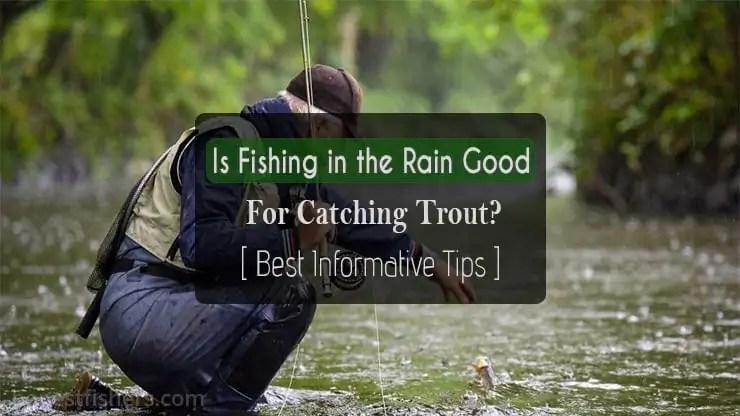 Fishing-in-the-Rain