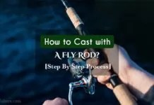 How to Cast with a Fly Rod?