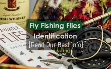 Fly Fishing Flies Identification