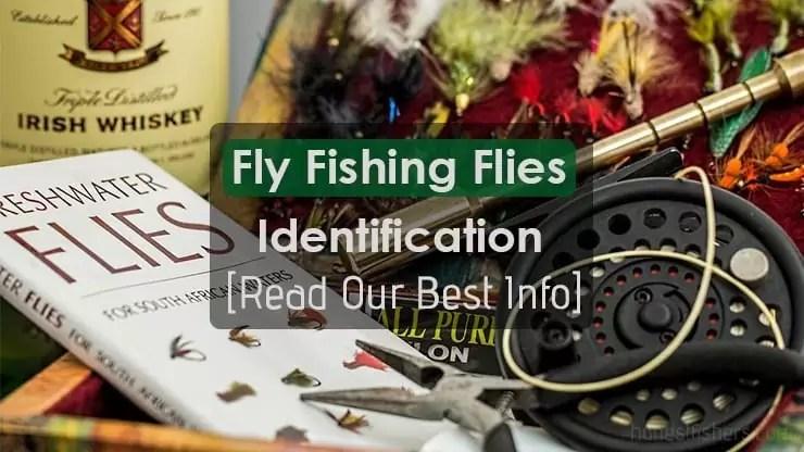 Fly Fishing Flies Identification Info