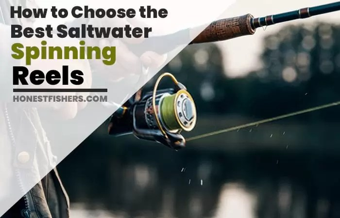 How to Choose the Best Saltwater Spinning Reel