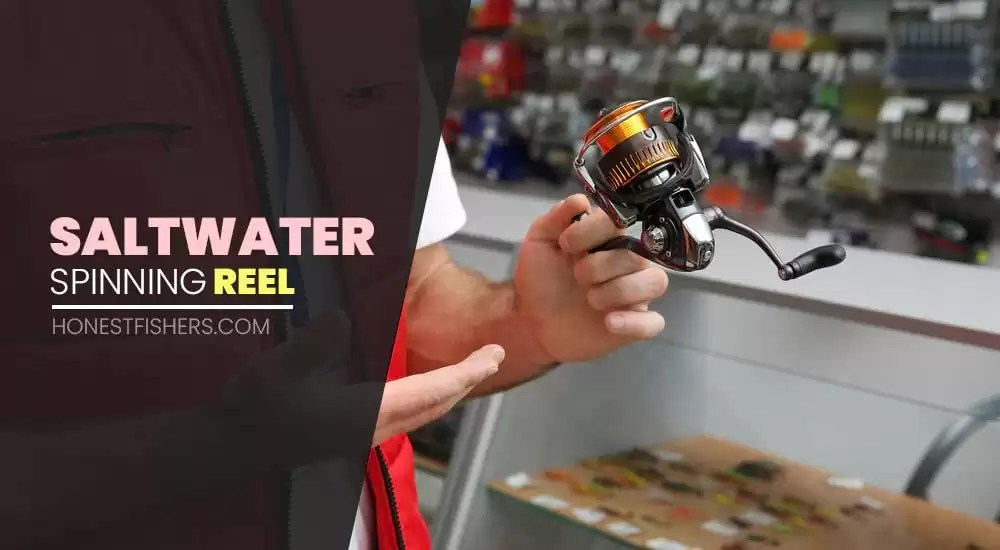 Best Budget Saltwater Spinning Reel | Affordable Price