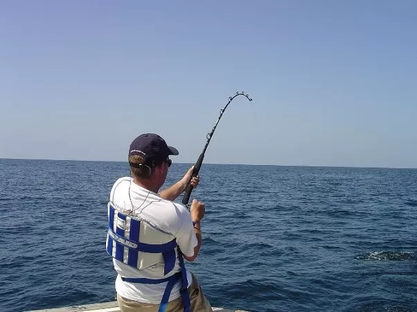 What Is a Fly Rod Used For?