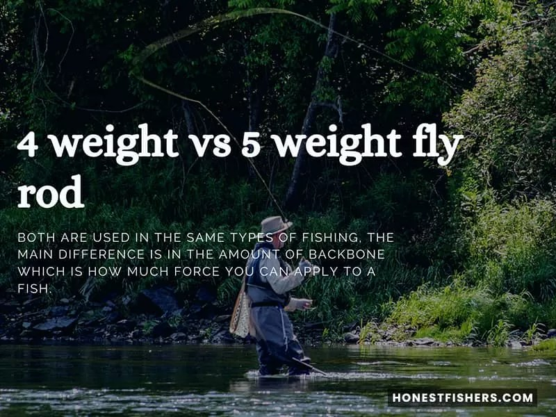 4 Weight Vs 5 Weight Fly Rod