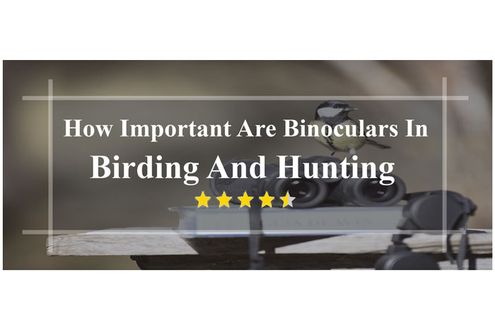 How-Important-Are-Binoculars-In-Birding-And-Hunting-details