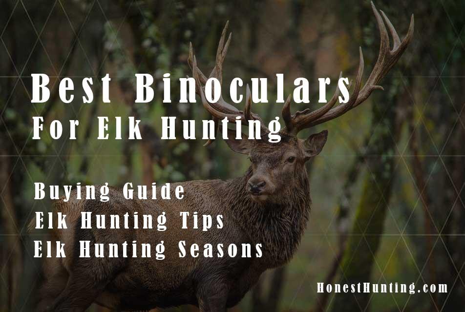 Best-Binoculars-for-Elk-Hunting