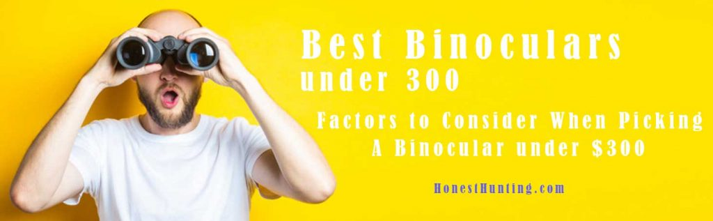 Best Binoculars under 300