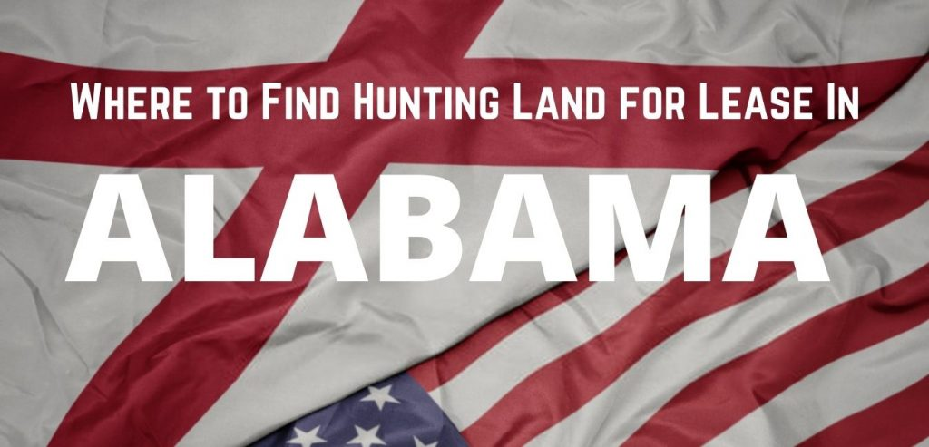 Find Hunting Land for Lease in Alabama