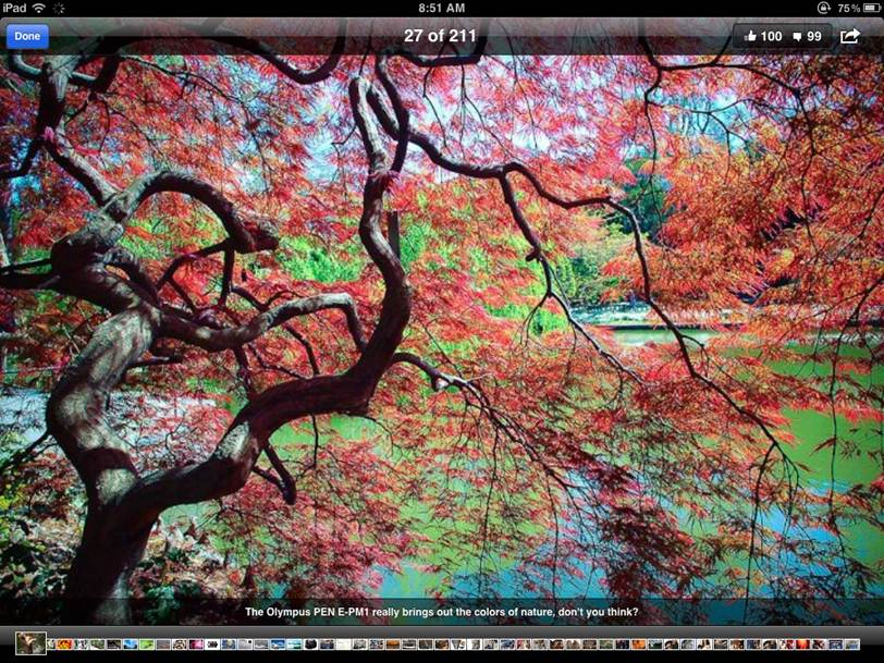 iPad screen snapshot