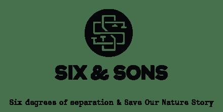 Six and Sons anachronym