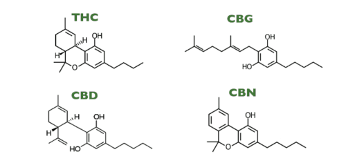 Marijuana Decarboxylation: Why And How To Decarb Your Weed