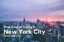 Pros and Cons of Living in New York