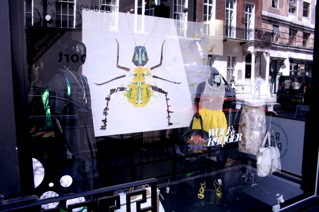 Wolf and badger window