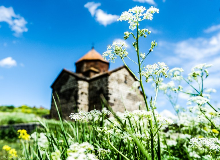 Wildflowers with one of the medieval Orthodox churches of Sevanavank Monastery.