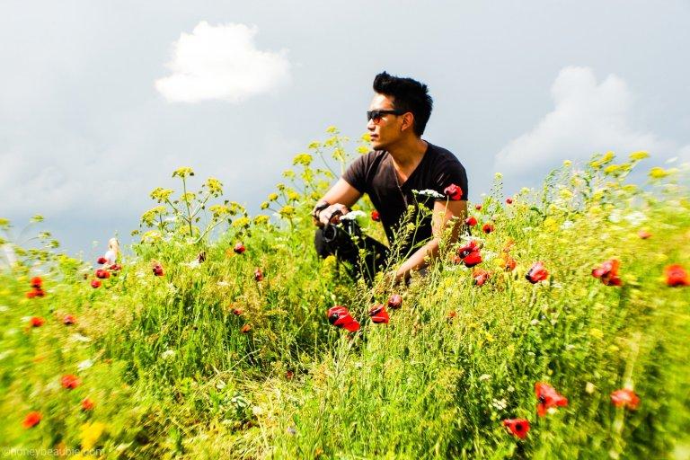wild_flowers_in_lake_sevan