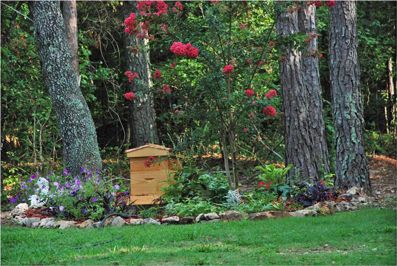 Garden hive by Guy Ross.