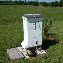 Herb Lester Apiaries, Tennessee.