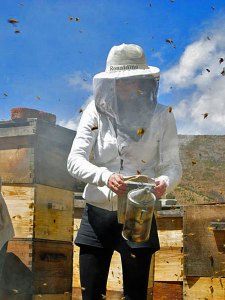A beekeeper using her smoker. Smoker fuel often varies with what is available. Just make sure it is non-toxic to the bees.