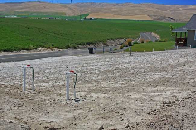 Alkali-beds-underground-irrigation