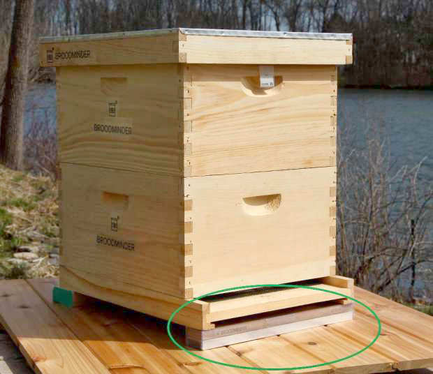 Weigh your hives with the Broodminder-W