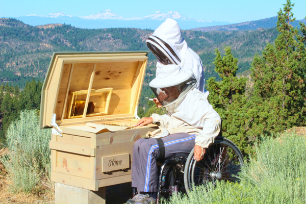 Honey bees and the happiness of pursuit: designing a better hive.