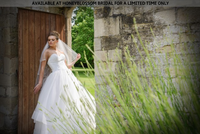 GAIA Nicole bridal gown - Available at Honeyblossom Bridal for a limited time only