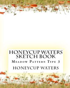 Honeycup Waters sketch book 3 book cover