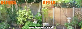 GARDEN TIDY, IVY REMOVAL AND JET WASHED FENCING